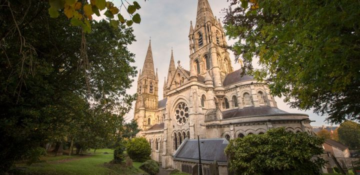 Saint Fin Barre_s Cathedral, Cork City, Co Cork
